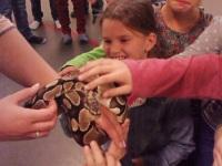 Foto bij dierendag 2013