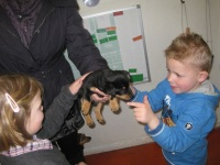 Foto bij Puppybezoek