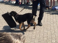 Foto bij Open dag politie Nijverdal