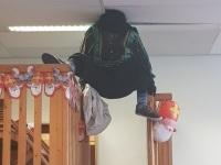 Afbeelding bij Sinterklaas